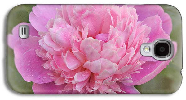 Indiana Flowers Galaxy S4 Cases - Peony - Pink Galaxy S4 Case by Sandy Keeton