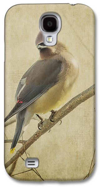 Jeff Swanson Galaxy S4 Cases - Perching Waxwing Galaxy S4 Case by Jeff Swanson