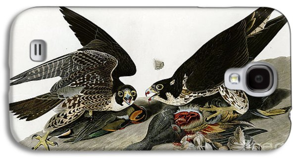 Wild Life Drawings Galaxy S4 Cases - Peregrine Falcons  Galaxy S4 Case by John James Audubon