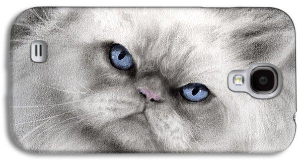Original Drawings Galaxy S4 Cases - Persian Cat with blue eyes Galaxy S4 Case by Svetlana Novikova