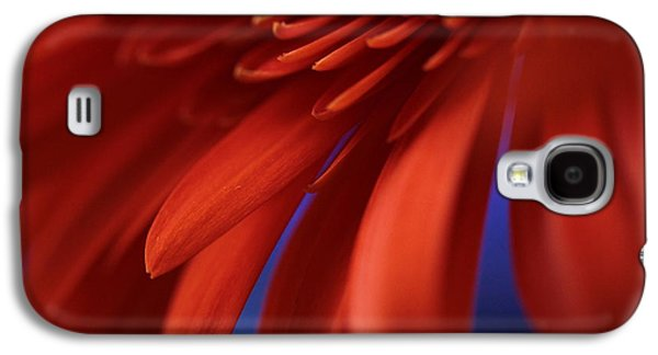 Flower Blooms Galaxy S4 Cases - Petals Galaxy S4 Case by Connie Handscomb
