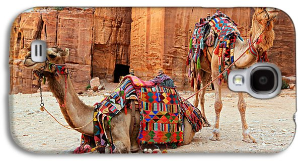 Ancient Galaxy S4 Cases - Petra Camels Galaxy S4 Case by Stephen Stookey