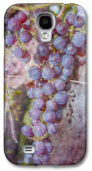 Jeff Swanson Galaxy S4 Cases - Phils Grapes Galaxy S4 Case by Jeff Swanson