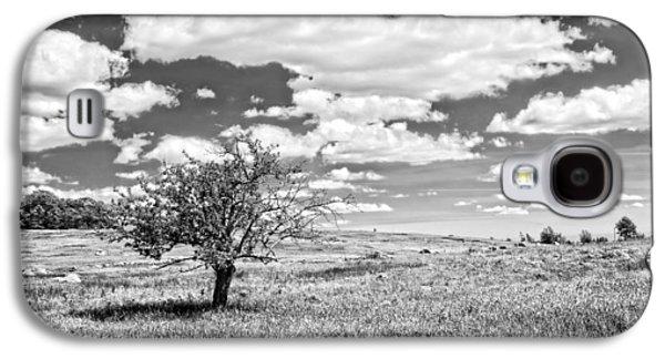 Field Digital Art Galaxy S4 Cases - Photo of Single Apple Tree In Maine Blueberry Field Galaxy S4 Case by Keith Webber Jr