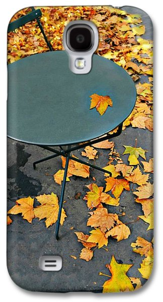 Bryant Park Galaxy S4 Cases - Picnic Bunch Galaxy S4 Case by Diana Angstadt