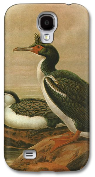 Chatham Paintings Galaxy S4 Cases - Pied Shag and Chatham Island Shag Galaxy S4 Case by J G Keulemans