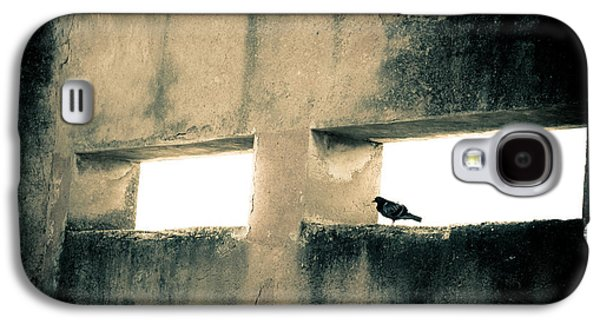 Buy Galaxy S4 Cases - Pigeon on a window of a derelict house Galaxy S4 Case by Georgina Noronha