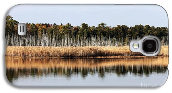 Pine Barrens Galaxy S4 Cases - Pine Barrens Reflections Galaxy S4 Case by John Rizzuto