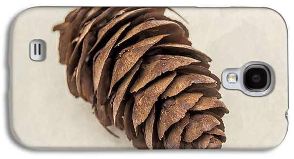 Pine Tree Galaxy S4 Cases - Pine Cone Galaxy S4 Case by Lucid Mood