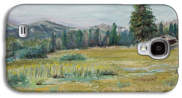 Fort Collins Pastels Galaxy S4 Cases - Pingree Park Galaxy S4 Case by Mary Benke