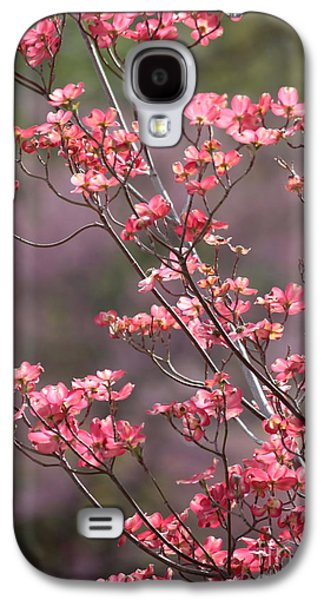 Sunlight On Flowers Galaxy S4 Cases - Pink and Purple Spring Trees Galaxy S4 Case by Carol Groenen