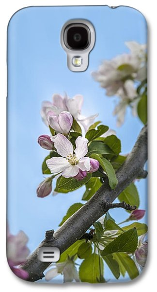Close Focus Nature Scene Galaxy S4 Cases - Pink And White Crabapple Flowers Galaxy S4 Case by Laura Berman