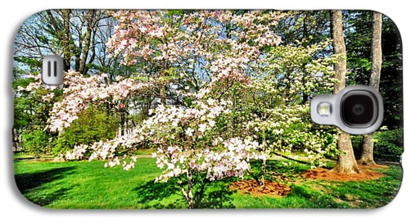 Cheekwood Galaxy S4 Cases - Pink Dogwood Galaxy S4 Case by Donald Groves