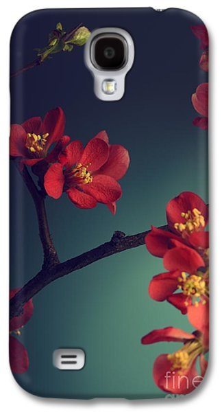 Studio Pyrography Galaxy S4 Cases - Pink Flower Galaxy S4 Case by Jelena Jovanovic