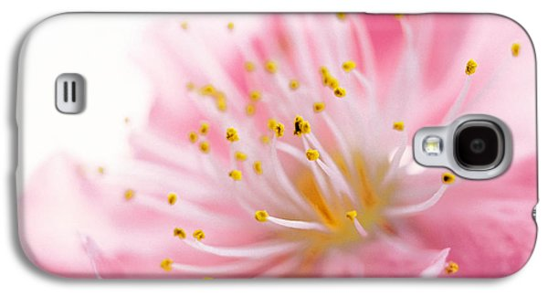 Designs In Nature Galaxy S4 Cases - Pink Flower Galaxy S4 Case by Panoramic Images