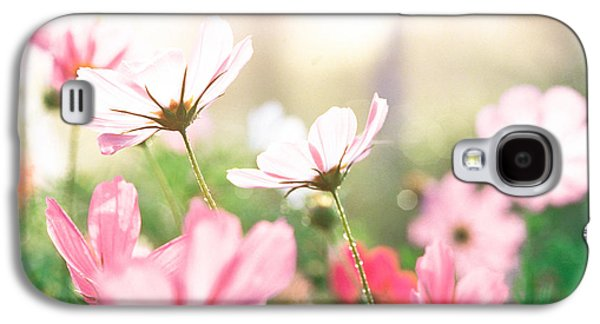 Sunlight On Flowers Galaxy S4 Cases - Pink Flowers In Meadow Galaxy S4 Case by Panoramic Images