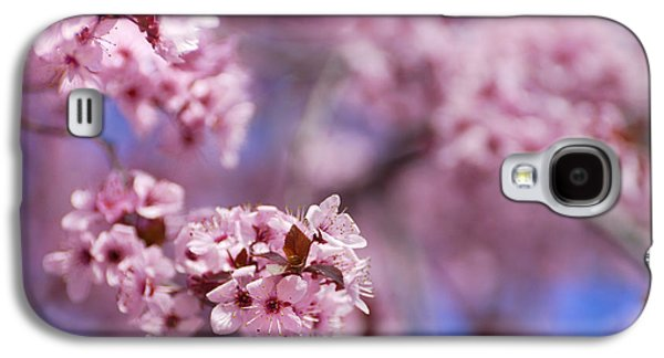 Cherry Blossoms Galaxy S4 Cases - Pink Galaxy S4 Case by Guido Montanes Castillo