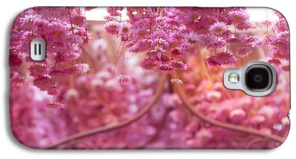 Flower Design Photographs Galaxy S4 Cases - Pink Helichrysum. Amsterdam Flower Market Galaxy S4 Case by Jenny Rainbow