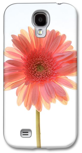 Pink Flower Galaxy S4 Cases - Pink Lemonade Galaxy S4 Case by Amy Tyler
