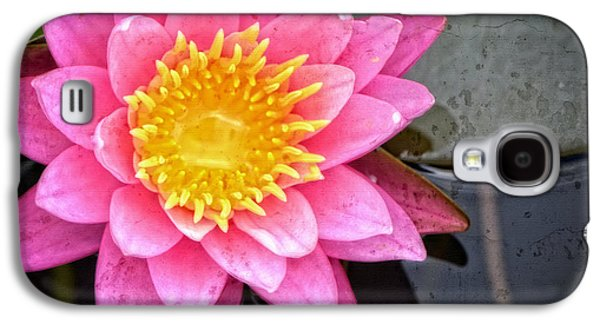 Affirmation Galaxy S4 Cases - Pink Lotus Flower - Zen Art by Sharon Cummings Galaxy S4 Case by Sharon Cummings