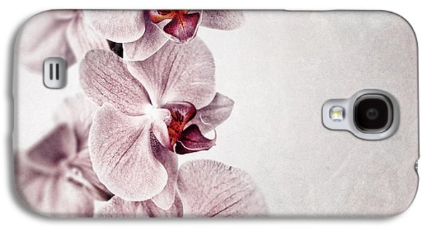 Parchment Galaxy S4 Cases - Pink orchid vintage Galaxy S4 Case by Jane Rix