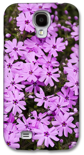 Nature Abstracts Galaxy S4 Cases - Pink Phlox Flowers Abstract Galaxy S4 Case by Christina Rollo