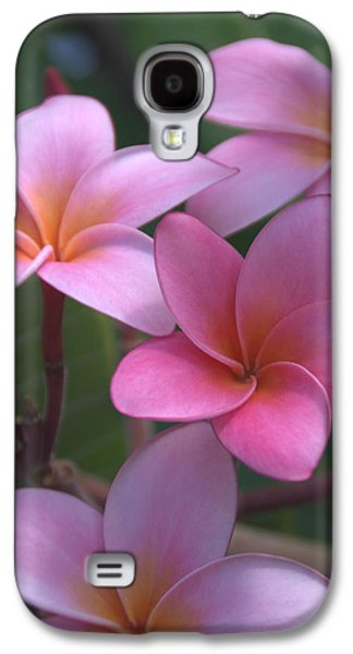 Pictures Photographs Galaxy S4 Cases - Pink Plumeria Galaxy S4 Case by Brian Harig