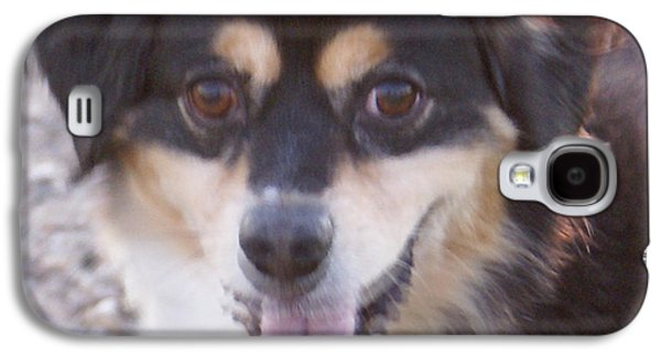 Puppy Digital Art Galaxy S4 Cases - Pink Tongue Galaxy S4 Case by Barbara Snyder