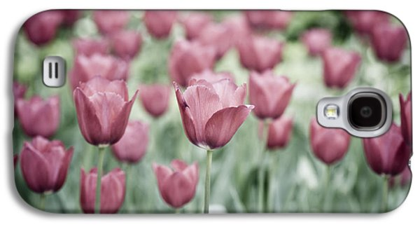 Garden Images Galaxy S4 Cases - Pink Tulip Field Galaxy S4 Case by Frank Tschakert