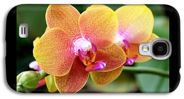 Pink Yellow Orchid Galaxy S4 Case by Rona Black