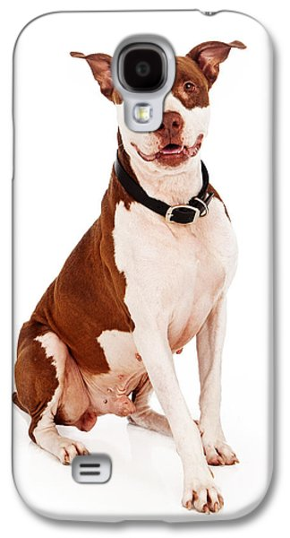 Guard Dog Galaxy S4 Cases - Pit Bull Dog With Happy Expression Galaxy S4 Case by Susan  Schmitz