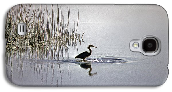 Photos Of Birds Galaxy S4 Cases - Platinum Heron Galaxy S4 Case by Skip Willits