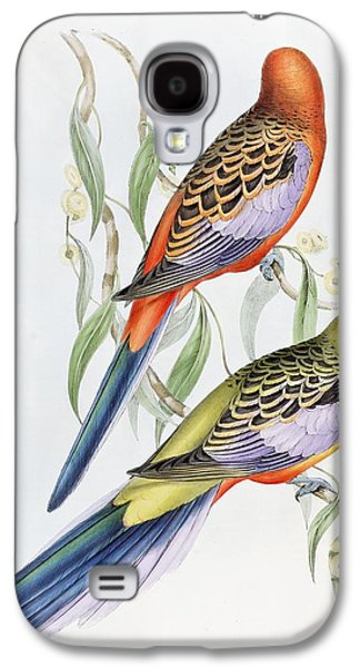 Talons Paintings Galaxy S4 Cases - Platycercus Adelaidae from the Birds of Australia Galaxy S4 Case by John Gould