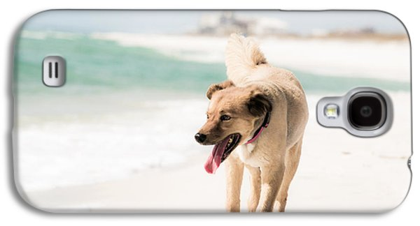 Dog Galaxy S4 Cases - Play Buddy Galaxy S4 Case by Shelby  Young