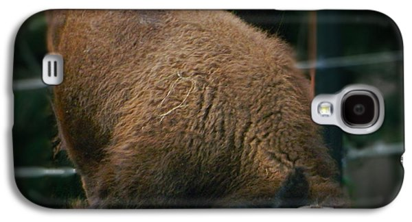 Bison Digital Art Galaxy S4 Cases - Playful  Bison Galaxy S4 Case by Emmy Marie Vickers