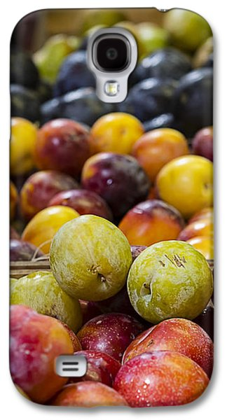 Farmstand Galaxy S4 Cases - Plum Gorgeous Galaxy S4 Case by Caitlyn  Grasso