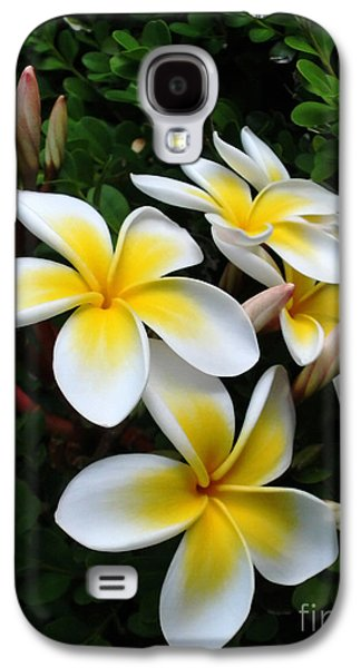 Sunlight On Flowers Galaxy S4 Cases - Plumeria in the Sunshine Galaxy S4 Case by Kaye Menner