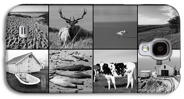 The Nature Center Galaxy S4 Cases - Point Reyes National Seashore 20150102 with text bw Galaxy S4 Case by Wingsdomain Art and Photography