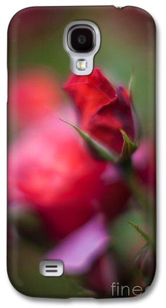 Floribunda Galaxy S4 Cases - Points Galaxy S4 Case by Mike Reid
