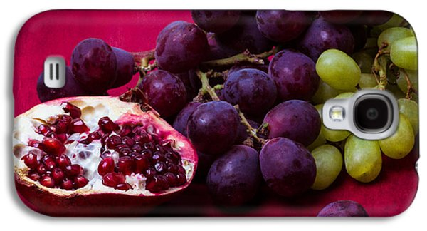 Grapes Art Deco Galaxy S4 Cases - Pomegranate And Green And Red Grapes Galaxy S4 Case by Alexander Senin