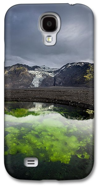 Alga Galaxy S4 Cases - Pond With Algae And Ash,from Galaxy S4 Case by Panoramic Images