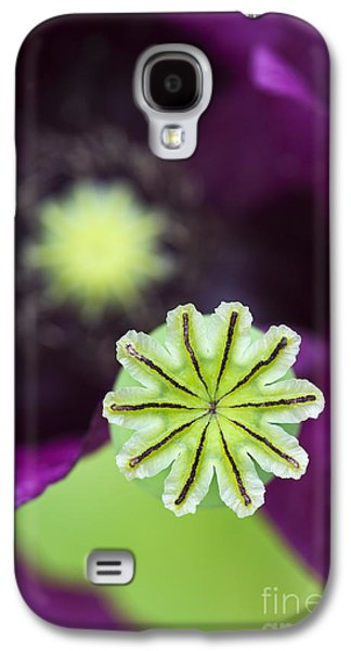 Pods Galaxy S4 Cases - Poppy Abstract Galaxy S4 Case by Tim Gainey