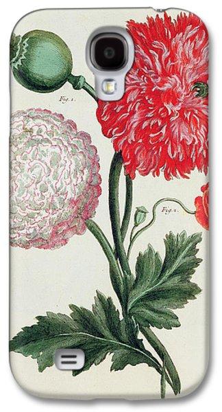 Botany Galaxy S4 Cases - Poppy Galaxy S4 Case by Basilius Besler