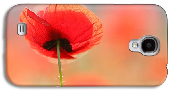 Flowers Photographs Galaxy S4 Cases - Poppy Dream Galaxy S4 Case by Roeselien Raimond