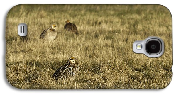 Matting Galaxy S4 Cases - Prairie Chickens after the Boom Galaxy S4 Case by Thomas Young