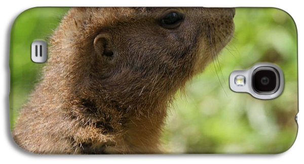 Prairie Dog Portrait Galaxy S4 Case by Dan Sproul