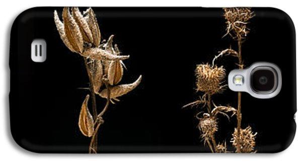 Studio Photographs Galaxy S4 Cases - Prairie Plant Life Galaxy S4 Case by Steve Gadomski
