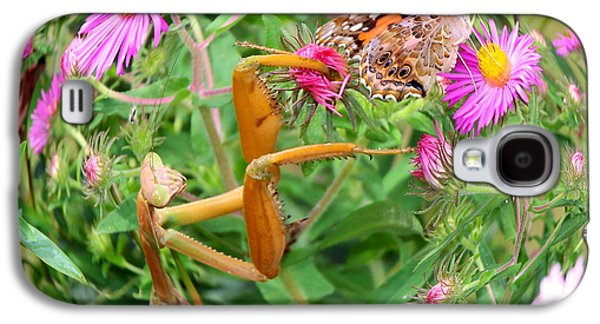 Butterfly Prey Galaxy S4 Cases - Predator and Prey Galaxy S4 Case by Andrea Kappler