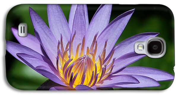 Florida Flowers Galaxy S4 Cases - Pretty Purple Petals Galaxy S4 Case by Sabrina L Ryan