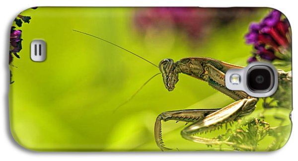 Preying Mantis Galaxy S4 Case by Geraldine Scull
